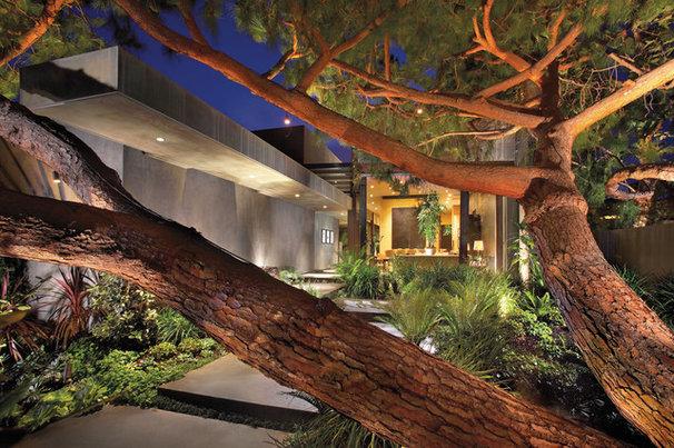 Contemporary Exterior by Prestige Builders