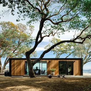 Idee per la facciata di una casa marrone moderna a un piano di medie dimensioni con rivestimento in legno e tetto piano