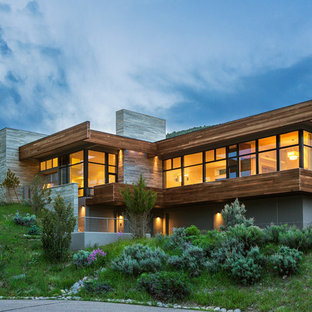 Huge contemporary gray two-story wood flat roof idea in Denver