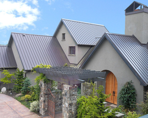 Tin roof design photos houzz for Clear story roof design