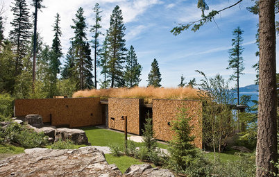 Houzz Tour: A Modern Take on a Montana Log House