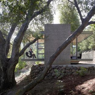 Bild på ett litet funkis hus, med glasfasad, allt i ett plan och platt tak