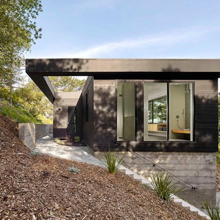 Mid-sized trendy black one-story wood exterior home photo in San Francisco
