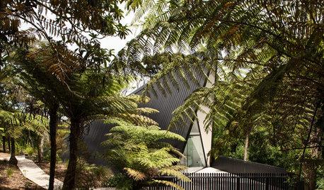 Houzz Новая Зеландия: Дом-палатка в зарослях кустарника