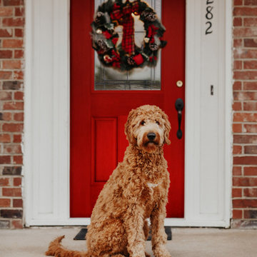 Traditional Bold Front Door and Porch for the Holidays with Wreath