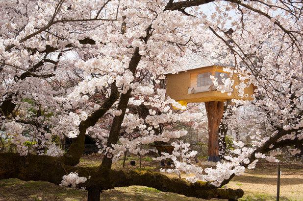 Tatami. Welcome To Japan. Grundschule Zur Zeit Der Japanischen