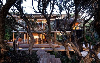 森の中にありながら、できるだけ木を切らずに建てたモダンハウス