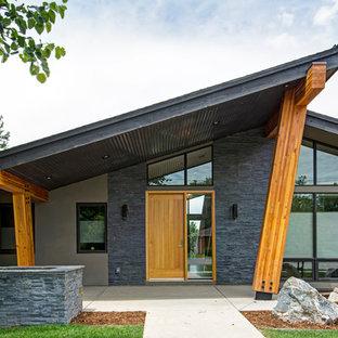Cette image montre une grand façade de maison grise vintage de plain-pied avec un toit en appentis et un revêtement mixte.