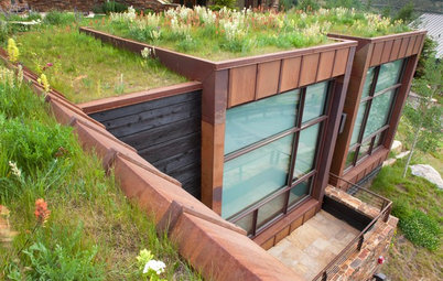 6 Green-Roof Myths, Busted