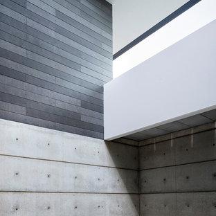 Aménagement d'une façade de maison grise rétro de taille moyenne et à deux étages et plus avec un revêtement en panneau de béton fibré, un toit à deux pans et un toit en métal.