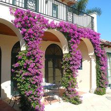 Mediterranean Exterior by Dawn Michelle Designs, LLC