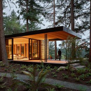 Идея дизайна: одноэтажный, стеклянный, черный частный загородный дом с плоской крышей