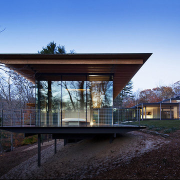 Wood and Glass House