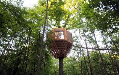 Houzz Франция: Дом на дереве с полноценным санузлом (!)