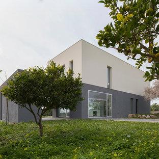 Ispirazione per la facciata di una casa grande grigia contemporanea a due piani con tetto piano