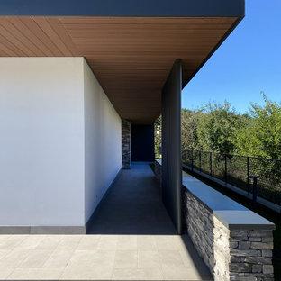 Idee per la facciata di una casa unifamiliare bianca contemporanea a un piano di medie dimensioni con rivestimento in pietra, tetto piano e copertura verde