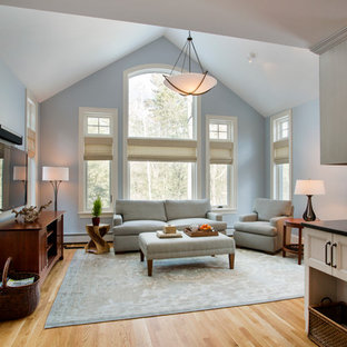 Inspiration for a transitional medium tone wood floor family room remodel in Boston with a tv stand and blue walls