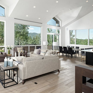 Aspen, Colorado Transitional Residence-Alpine White Oak