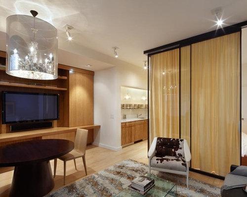 Sliding Room Divider Home Design Ideas Pictures Remodel