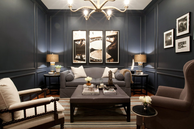 Contemporary Family Room by Elizabeth Reich