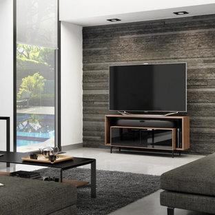 Ispirazione per un soggiorno moderno di medie dimensioni con pareti grigie e TV autoportante