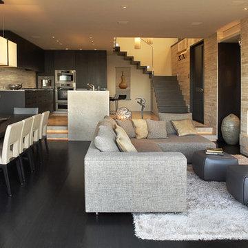 Beck Residence - family room