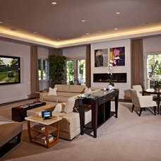 Contemporary Family Room by VIA - DSI