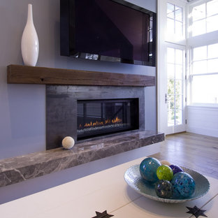Sensational Mantle Less Fireplace Houzz Download Free Architecture Designs Scobabritishbridgeorg