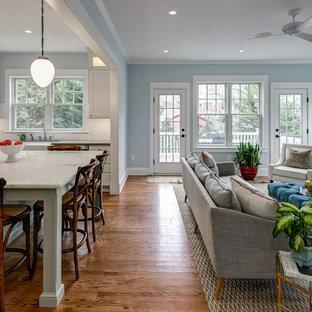 オレンジカウンティの中サイズのおしゃれなファミリールーム (青い壁、無垢フローリング、標準型暖炉、漆喰の暖炉まわり、壁掛け型テレビ) の写真