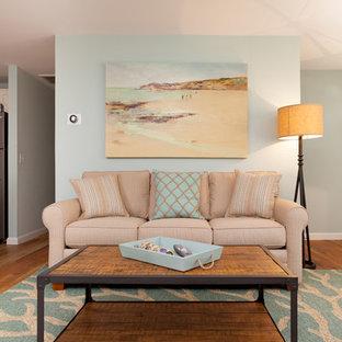 ボストンの中サイズのビーチスタイルのおしゃれなファミリールーム (青い壁、無垢フローリング、薪ストーブ、金属の暖炉まわり、据え置き型テレビ) の写真