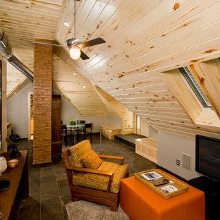 Colorado Attic Apartment