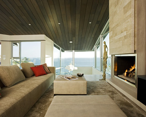 Modern Fireplace Insert | Houzz