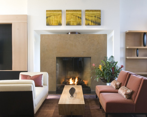 Living Room Fireplace IdeaHouzz