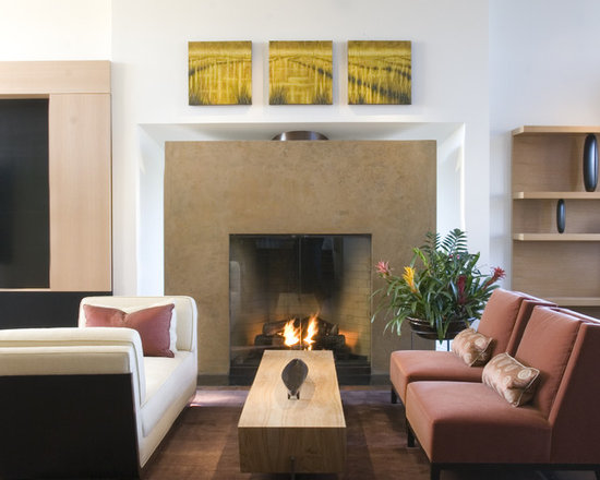 Living Room Fireplace Idea Houzz - How to decorate a living room with a fireplace