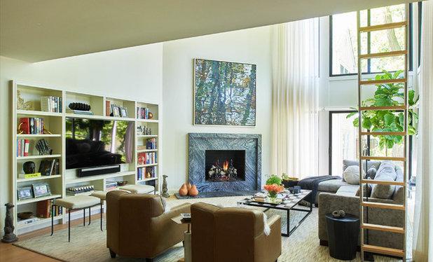 Contemporary Family Room by Lorraine Levinson Interior Design