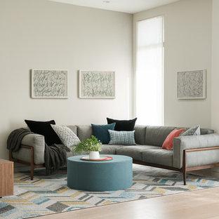 Ispirazione per un soggiorno minimal aperto e di medie dimensioni con pareti grigie e parquet chiaro