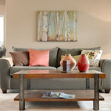 Transitional Family Room by Hampton Redesign