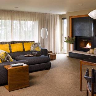 シアトルのミッドセンチュリースタイルのおしゃれなファミリールーム (カーペット敷き、標準型暖炉、金属の暖炉まわり、埋込式メディアウォール) の写真