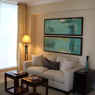 Family Room, full size sleeper sofa