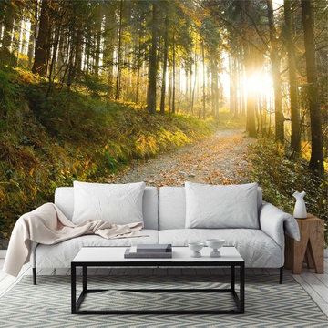 forest path wall paper
