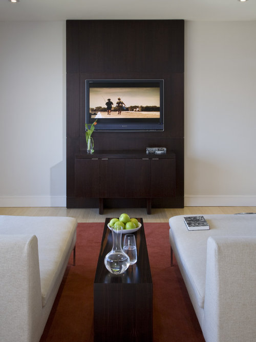 inspiration for a contemporary family room remodel in dc metro with light hardwood floors - Tv Wall Panels Designs