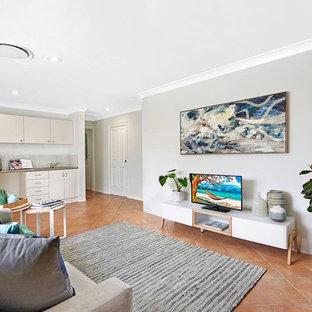 Immagine di un soggiorno stile marino di medie dimensioni e aperto con pareti grigie, pavimento in terracotta e pavimento arancione