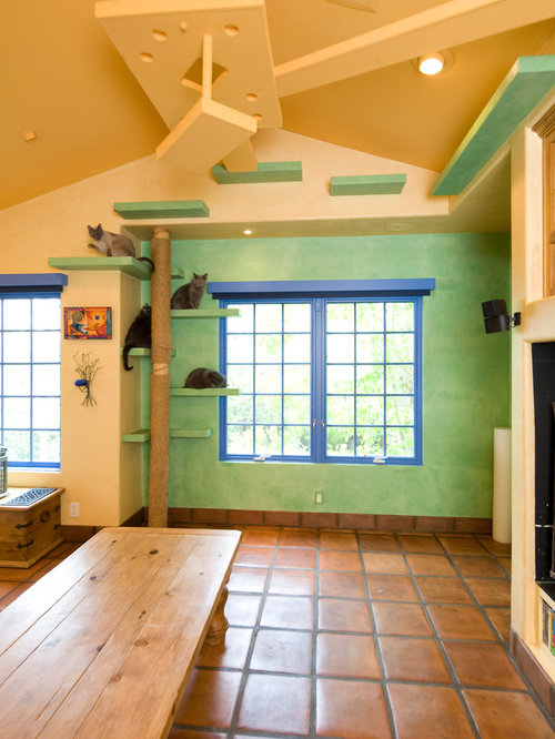 Cat Room Home Design Ideas Pictures Remodel And Decor