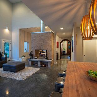他の地域のコンテンポラリースタイルのおしゃれなオープンリビング (グレーの壁、コンクリートの床、両方向型暖炉、レンガの暖炉まわり) の写真