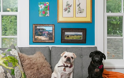 Colorful Addition for Globetrotters and Their Pugs