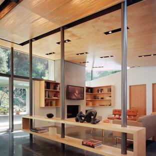 Foto de sala de estar minimalista, de tamaño medio, con paredes blancas, suelo de cemento, chimenea tradicional, marco de chimenea de yeso y televisor colgado en la pared
