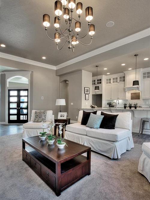 Sherwin Williams Requisite Gray Home Design Ideas