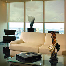 Modern Family Room by Insolroll Window Shading Systems