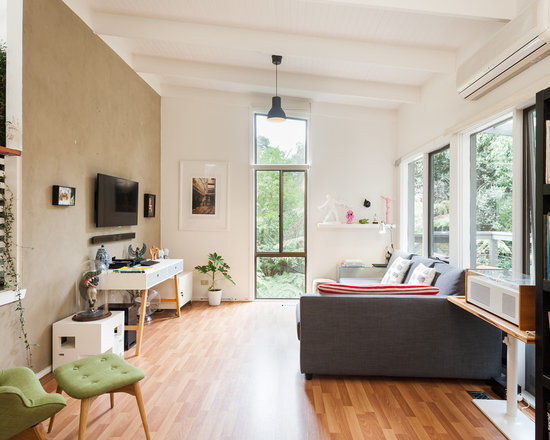 Wall Air Conditioner Houzz - Living room air conditioner