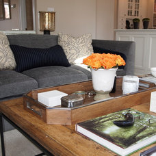 Traditional Family Room by Elizabeth Reich
